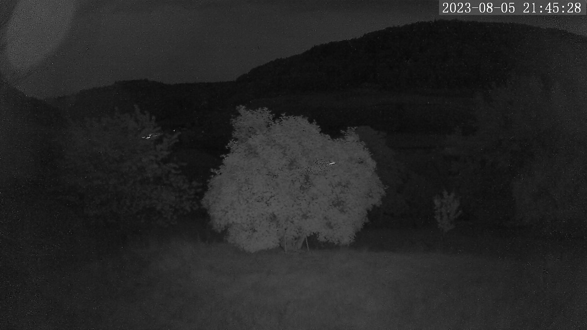 Vorschau Webcam